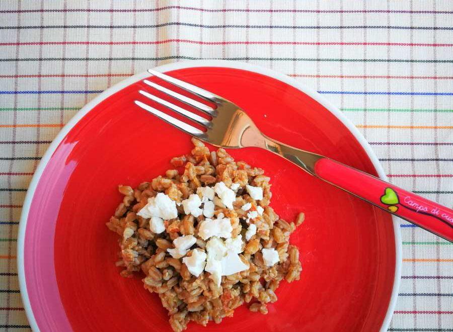 Insalata di farro con pesto di pomodori secchi e sedano